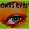 catseyes97411