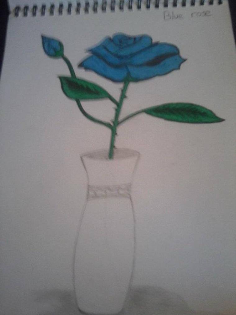 Dessin:BlueRose